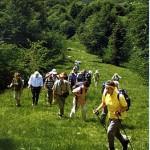 Wanderer steigen den Monte Baldo